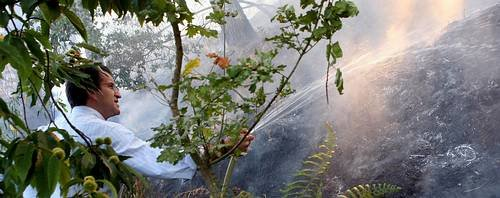 Feijoo criminaliza a los propietarios para prevenir incendios forestales