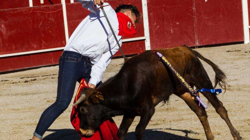 Maltrato animal. Un juez no ve maltrato animal tirar a un perro a un pozo de 30 metros - Página 3 Pacma-denuncia-una-nueva-becerrada-en-san-rafel-segovia_4_800x450