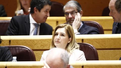 El PP pide que el Gobierno aclare si Pedro Sánchez va a cobrar por la venta del libro y cuánto