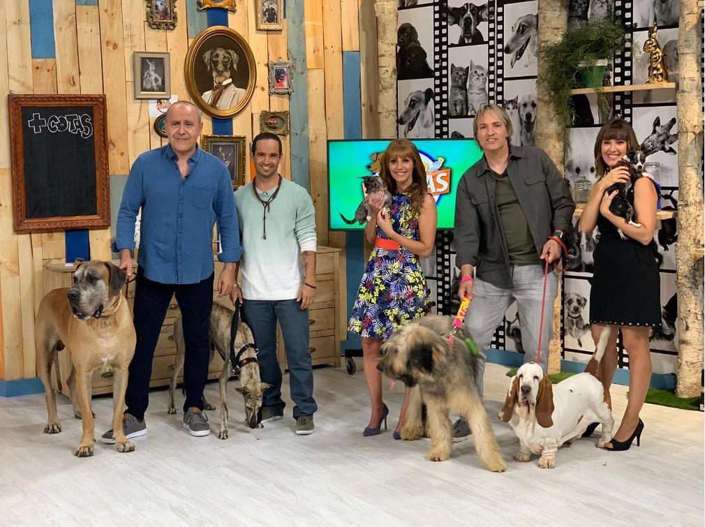 El Programa De Las Mascotas En Tve Despide Temporada Con
